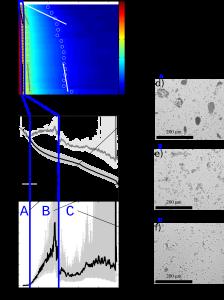 Figure 2 - Mesures du SCAF pour une suspension de sédiment de la rivière Ells. (a) Mesures d'absorbance du SCAF, (b) distribution de vitesses de chute et (c) indice de floculation. À partir de leur vitesse de chute et de leur indice de floculation, trois types de particules peuvent être différenciées au sein de l'échantillon : A) des particules sableuses et limoneuses qui chutent rapidement et ne floculent pas, B) des flocs organiques et C) des petits flocs ou agrégats argileux. Des vues au microscope optique des particules A), B) et C) sont présentées en e), f), et g).
